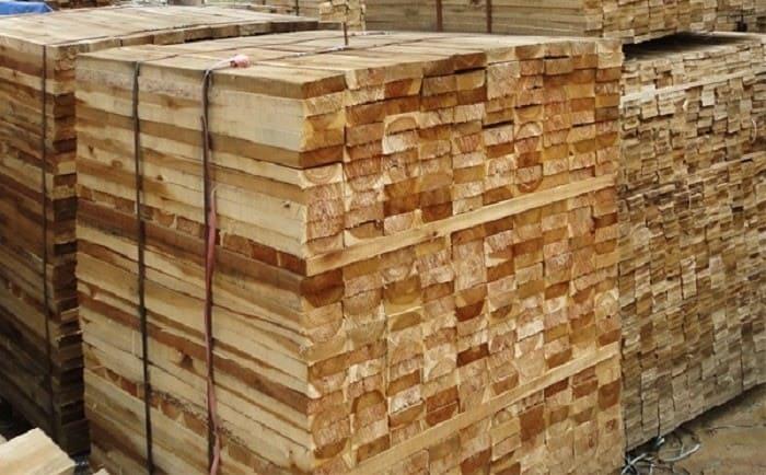 Gỗ tràm là gỗ gì
