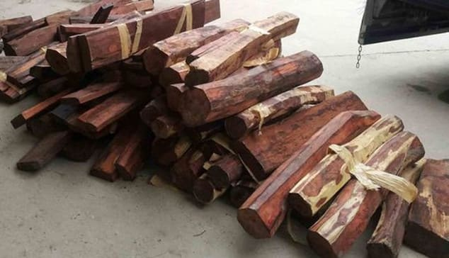 Đặc điểm của gỗ trắc