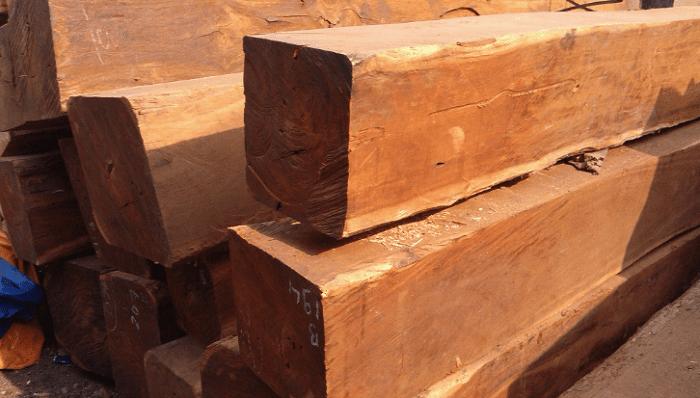 Đặc điểm gỗ căm xe