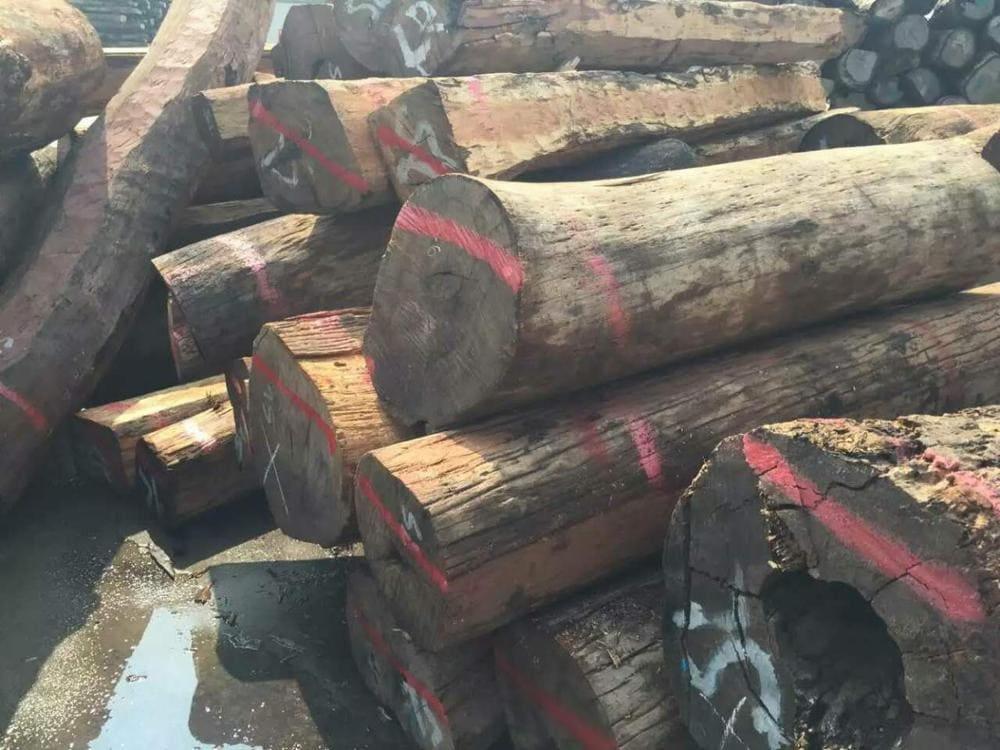 Gỗ hương xám là gỗ gì
