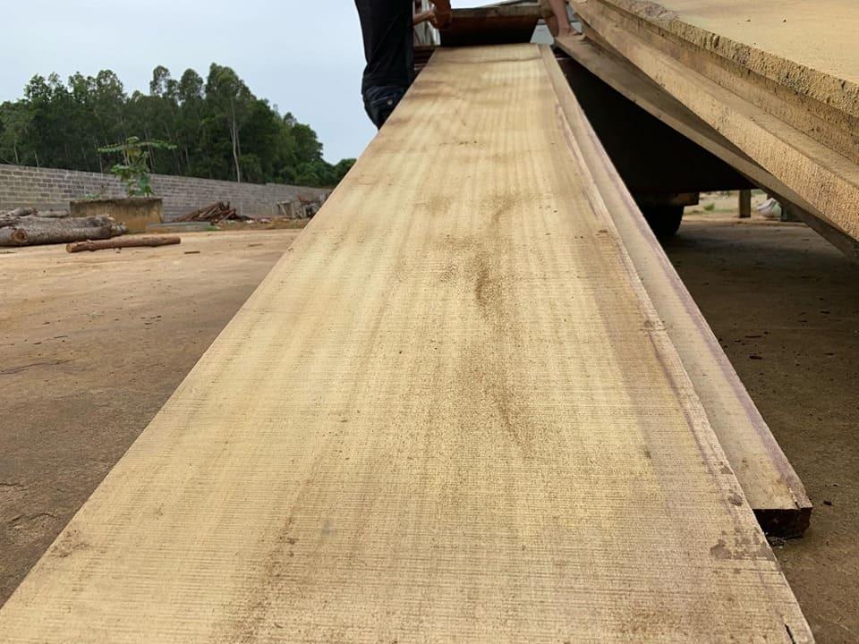 Gỗ lát là gỗ gì