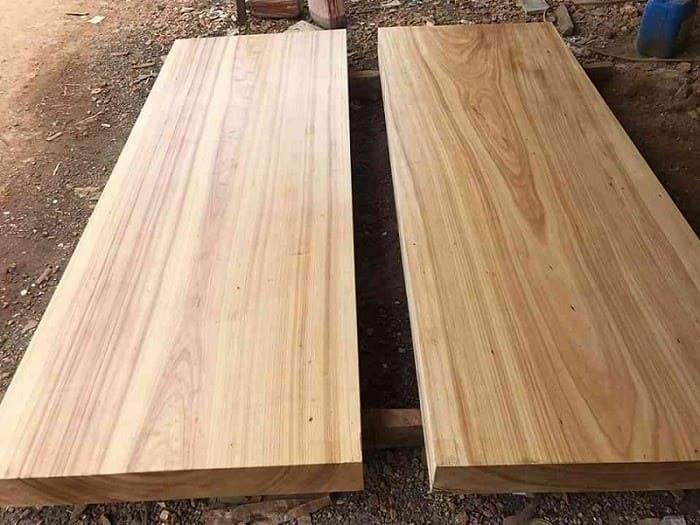 Những đặc điểm nổi bật của gỗ Sao