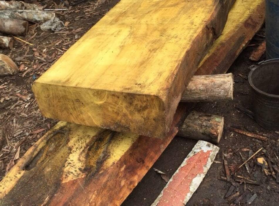 Phân loại gỗ mít