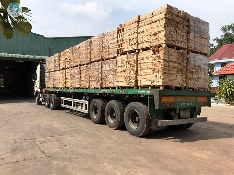 Thu mua gỗ cao su giá cao