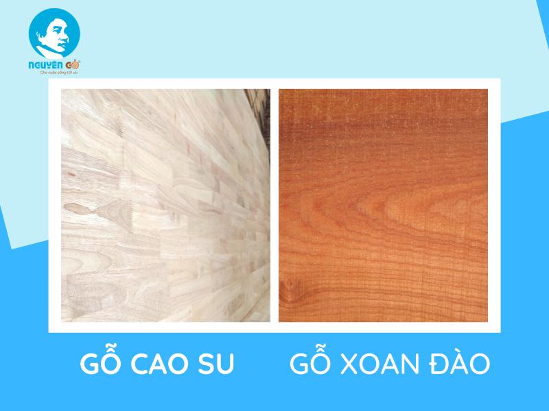 So sánh gỗ cao su và gỗ xoan về nhược điểm